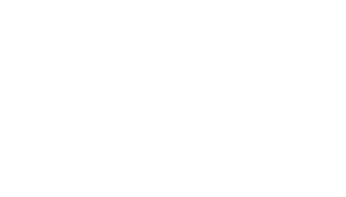 Logo / Eagle Eye